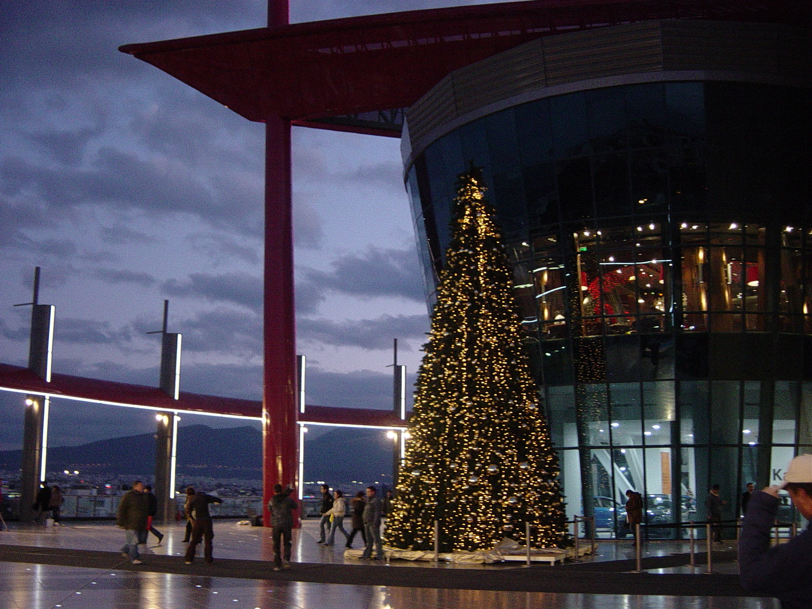 Christmas Tree Shopping Mall